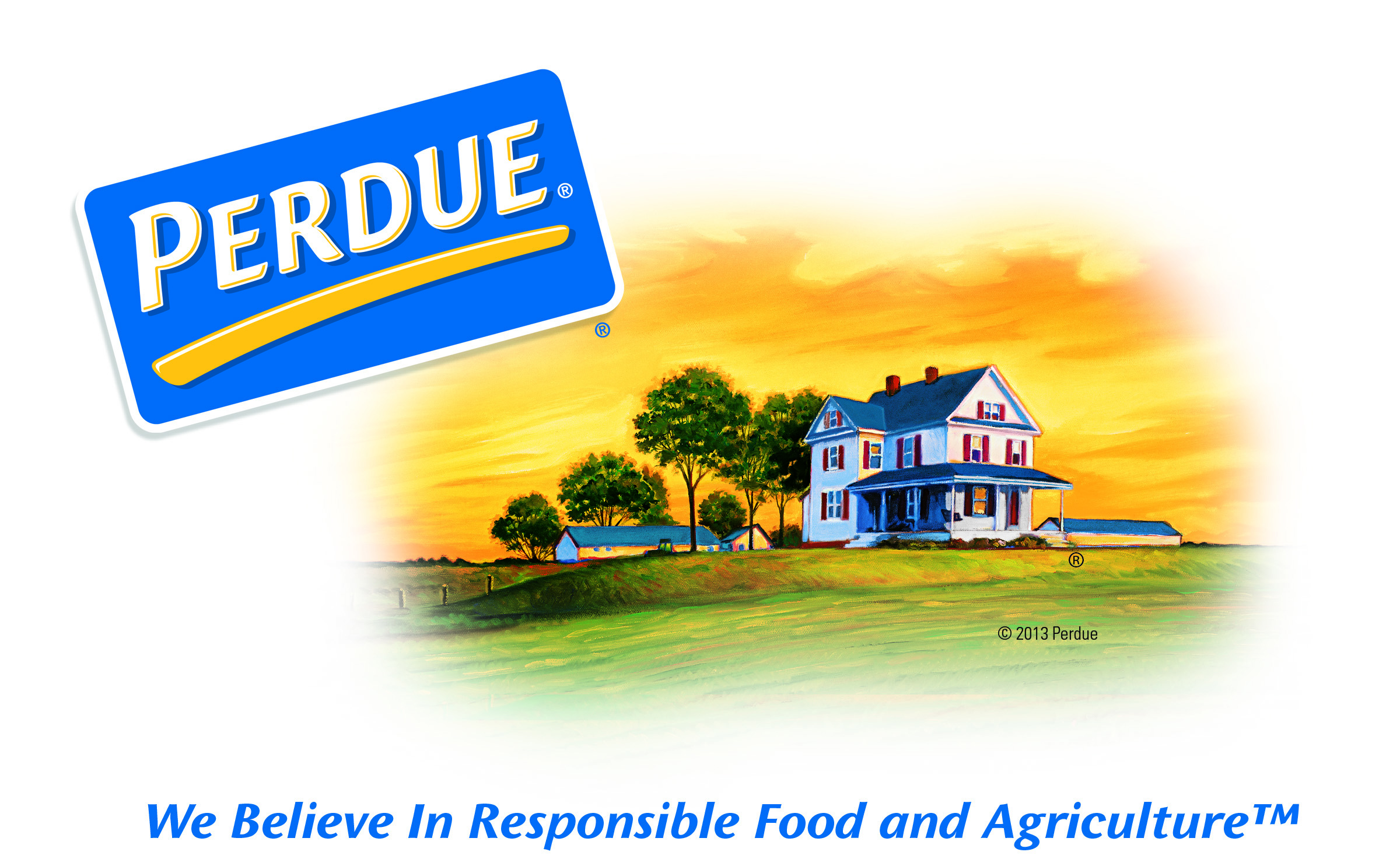 perdue farms organizational structure Organization theory and design case for analysis: perdue farms inc: of organization structure purpose of this chapter, 90.